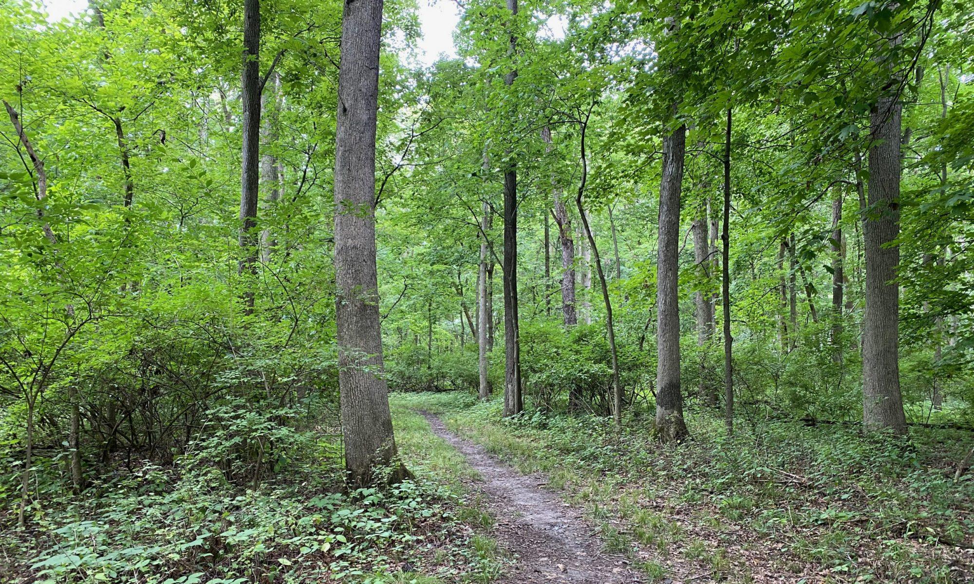 Menard County Trails & Greenways