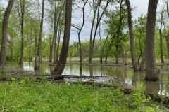 Sangamon River