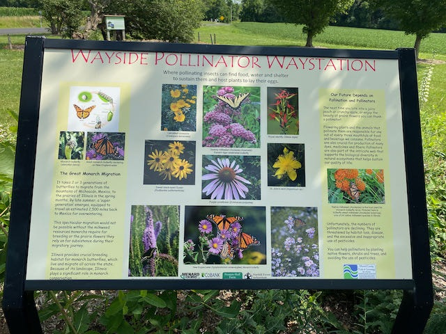 Pollinator Waystation Interpretive Sign